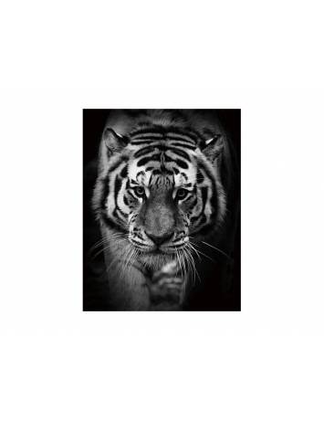TABLOU DECORATIV TIGER 80X 120 DIN STICLA DESIGN EXCLUSIVIST
